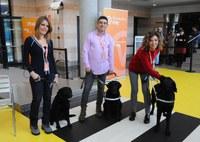Periodistas de RTVE junto a los perros guía de la ONCE