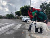 Paco González, un vendedor de cupones de la ONCE que es sordociego junto a Olay su perro guía