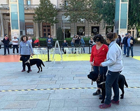 instructoes junto a los perros guía y una usuaria durante la exhibición en Reus