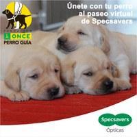 Imagen de la campaña con la leyenda 'únete con tu perro al paseo virtual'