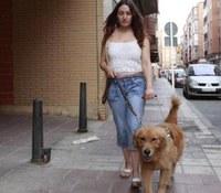 Perro de asistencia junto a su usuaria