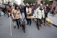 Perros guía en las 'Vueltas de San Antón'