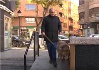 perro guía y su usuario paseando por la calle