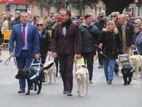 Perros guía en el desfile en la Festividad de San Antonio Abad