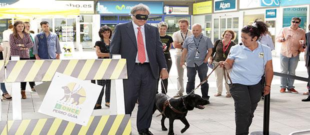 Exhibición de perro guía en la sede de Telefónica