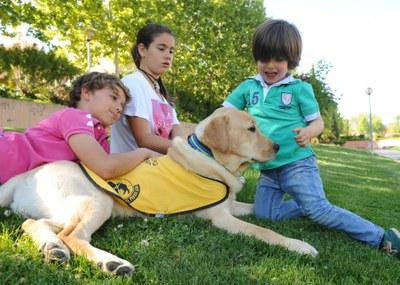 Cachorro en educación con su familia de acogida