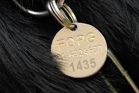 Medalla de perro guía de la FOPG