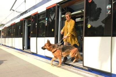 Una usuaria se baja de un tren con su perro guía