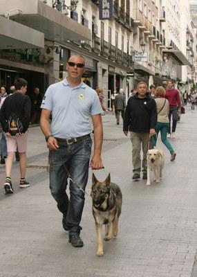 Dos adiestradores de la FOPG trabajan con sus perros en la calle