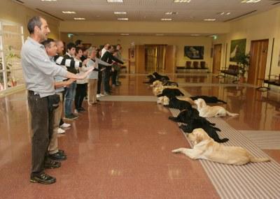 Un instructor enseña a un grupo de alumnos la orden QUIETO, para que el perro permanezca echado