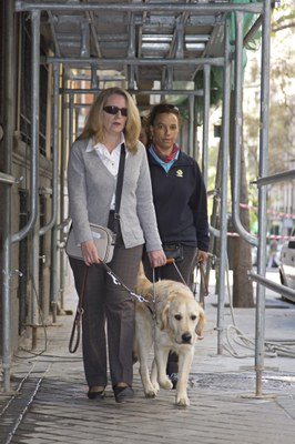 Una instructora supervisa a una usuaria de perro guía pasando bajo un andamio
